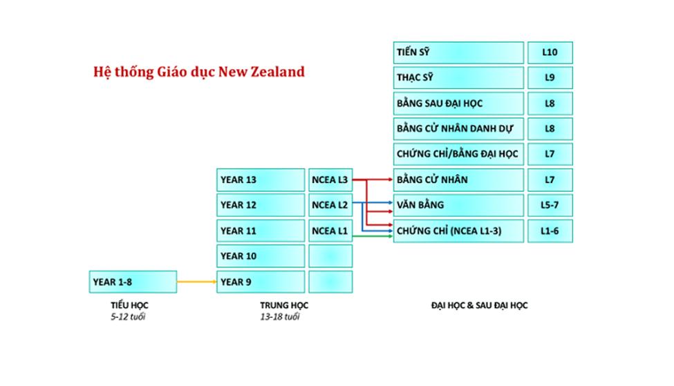 Bảng hệ thống giáo dục New Zealand