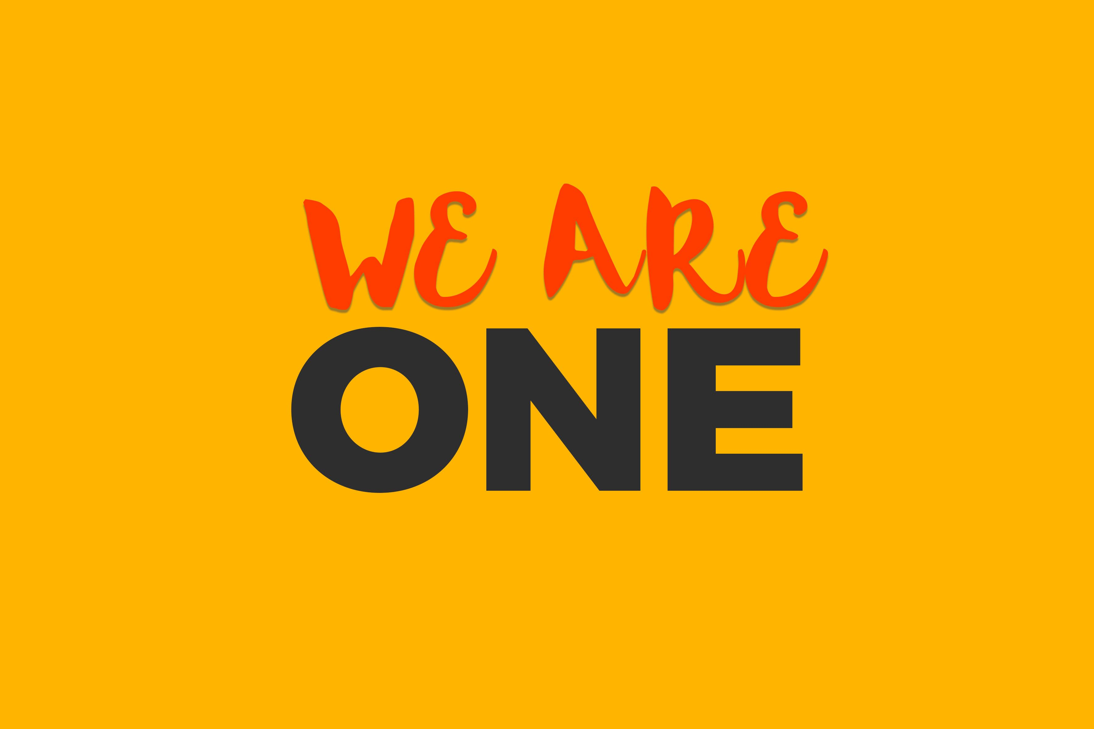 We are one: Chúng ta là số 1