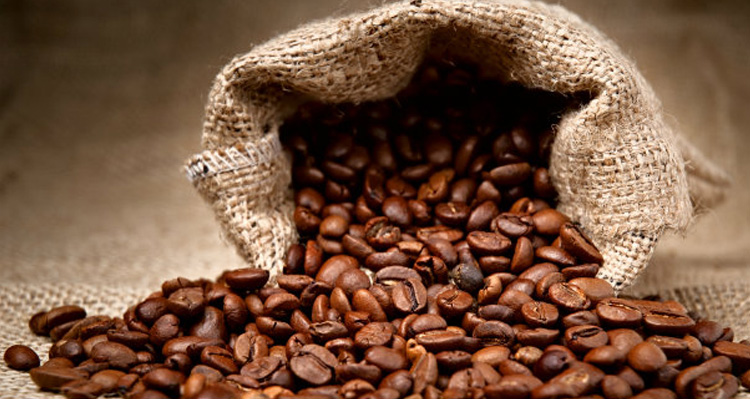 Từ vựng tiếng Anh trong sản xuất cà phê