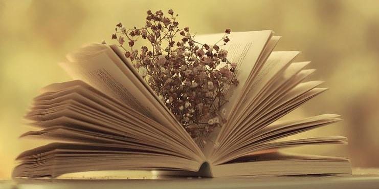 Thuật ngữ tiếng Anh chuyên ngành Văn học