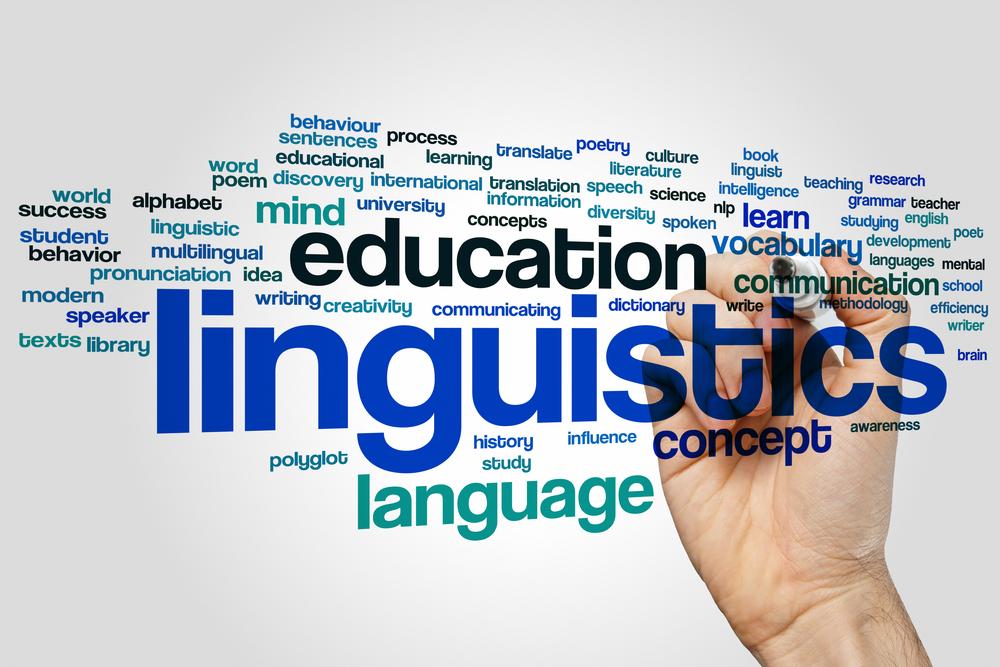 Từ vựng tiếng Anh về các loại từ